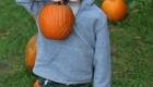 pumpkin-boy