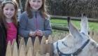 girls-with-donkey