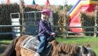 pony-rider